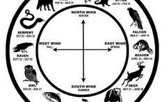 Oroscopo dei nativi americani: a ogni segno zodiacale corrisponde un animale guida