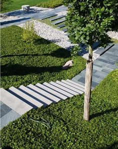 thick ground cover to cover sloped areas or awkwardly leveled areas next to walkways works well Ulf Nordfjell