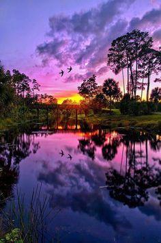 Sunset Reflection in Jupiter, Florida, USA pic.twitter.com/GTrcpZH6ra
