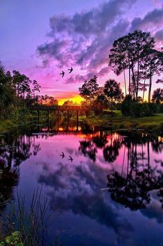 Sunset Reflection in Jupiter, Florida, USA pic.twitter.com/GTrcpZH6ra
