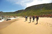 Hiking along the beach Provinces Of South Africa, Great View, Coastal, Trail, Hiking, Explore, Catcher, Beach, Southern