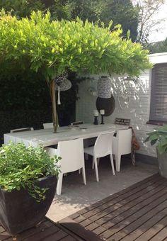 Natuurlijke overkapping voor de tuin