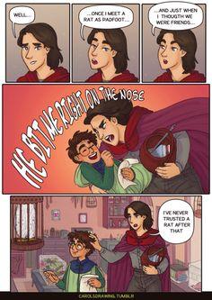 Sirius raises Harry AU. part 2