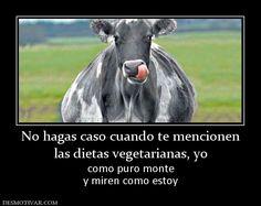 No+hagas+caso+cuando+te+mencionen+las+dietas+vegetarianas,+yo+como+puro+monte+y+miren+como+estoy