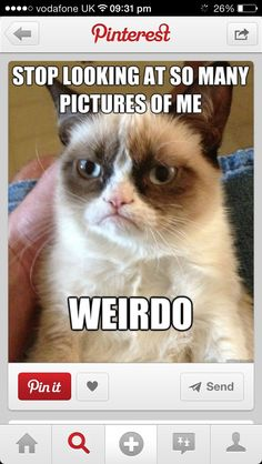 """Stop looking at so many pictures of me, weirdo."" by sarcastic Grumpy Cat."