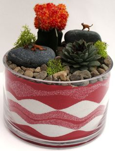"""This dish garden kit is designed especially to display sand-art and includes all the essential elements for a healthy, low maintenance dish garden. Included is a 6 inch diameter sand-art dish garden, substrate materials and soil designed especially to keep your dish garden healthy, decorative sand (red and white), decorative gravel (natural), decorative stones, decorative moss, an easy care succulent, a hardy cactus, and miniature cougars. These are easy to assemble, look great on any…"