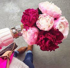 Pale pink & bright pink peonies