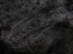 Zwartbleswol #ruwewol #purewol #onbewerktewol #schaapswol #schapenwol #Purewol