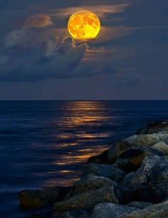 I love how the moon reflects it's beauty on the serenity of the ocean.