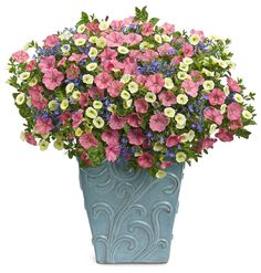 Proven Winners | Bermuda Skies container recipe. This is the design that has appeared in all of our advertising and it was selected by home gardeners to be featured! More container designs here: http://www.provenwinners.com/container-gardening/container-recipes