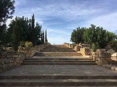 Op deze archeologische site vindt je mozaïeken in de huizen van Dionysos, Theseus, Aion en Orpheus