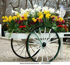 wagons with flowers - Bing Images