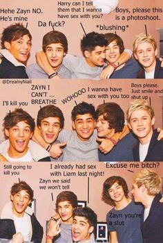 Don't know if it's made by a NON-DIRECTIONER or just made by a crazy Directioner who is in to BL Stuffs. Still very nice. XD