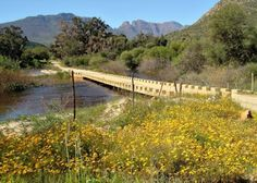 The pass starts at the crossing of the Olifants River    Nieuwoudts Pawss