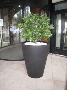 Holiday Club, Flower Pots, Planter Pots, The Originals, Projects, Design, Flower Vases, Log Projects, Plant Pots
