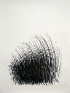 Line /direction and hatching // Michael DeLucia - Grass Black And White Abstract, You Draw, Art Plastique, Mark Making, Line Drawing, Traditional Art, Textures Patterns, Art Drawings, Contemporary Art