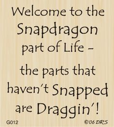Snapdragon Greeting DRS Designs
