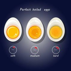 Illustration of Vector illustration of hard-boiled eggs. vector art, clipart and stock vectors. Independence Day Poster, Perfect Boiled Egg, Egg Vector, Bullet Journal Writing, Food Drawing, Banner Printing, Hard Boiled, Infographic