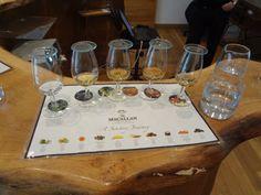 Tasting the range of single malt whisky at Macallan Distillery visitor centre