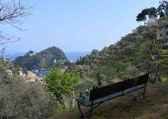 La panchina al centro della fattoria botanica su cui lord Carnarvon si sedeva a contemplare #Portofino.