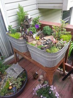 Fairy garden in wash tub.