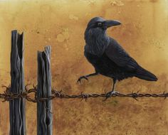 Liza Myers | ACRYLIC | Raven on a Wire