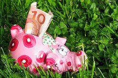 Die Qual der Wahl. Worauf Anleger bei Ökoanlagen achten sollten. Ökologische Anlagen können deutlich mehr Rendite abwerfen als Sparbuch und Co. Das süße Sparschwein wirft leider überhaupt keine Zinsen ab. ...