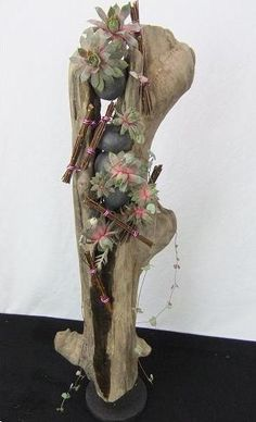 Floral art design using driftwood and succulents, rocks and sticks