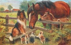 brown horse and foal, collie dog & three puppies