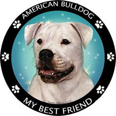American Bulldog My Best Friend Dog Breed Magnet