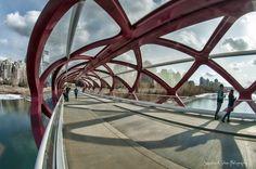 Peace Bridge, Calgary, Canada by Santiago Calatrava.
