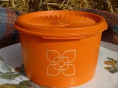 Vintage Tupperware Tub - The Picnic Patch