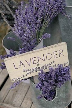 Farm Sign with Dried Lavender for Sale at Lavender Festival, Sequim, Washington, USA Photographic Print by John & Lisa Merrill at AllPosters.