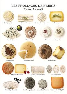 Sheep`s cheese! Nouvelles Images' Multiples series