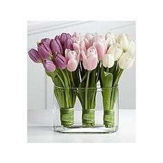 tulip flower arrangements | Tulip Arrangement by colette