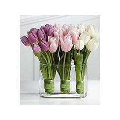 tulip flower arrangements | Tulip Arrangement by colette