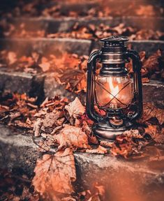 Image about photography in 𝐹𝑎𝑙𝑙 🍂🍁🍂🍁 by Aaliyah Kinniburgh Fall Wallpaper, Cute Wallpaper Backgrounds, Autumn Photography, Creative Photography, Autumn Aesthetic Photography, Halloween Photography, Autumn Scenes, Autumn Cozy, Fall Pictures