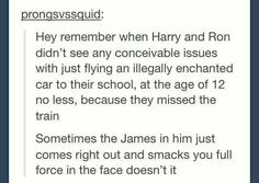 Harry your James is showing <--- except James probably would do something crazier if that's possible. Like take Sirius' motorbike (if it existed at that point) which doesn't even have an invisibility button