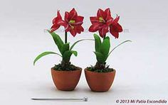Red and white amaryllis - Dollhouse miniature flowers