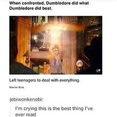I hate dumbledore. This is mine. I LOVE DUMBLEDORE. I fucking hate dumbledore the manipulative bastard Harry Potter Love, Harry Potter Universal, Harry Potter Fandom, Harry Potter Memes, Slytherin, Hogwarts, Percy Jackson, Scorpius And Rose, No Muggles