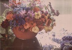 autochrome photo,