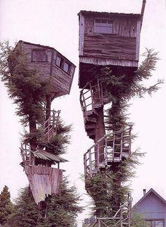 STRANGE TREE HOUSES! - AMAZING