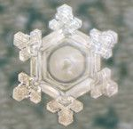 Proof that your Thoughts Influence your Reality - the work of Dr. Masaru Emoto Water, Hidden Messages In Water, Crystal Gallery, Water Experiments, Structured Water, E Mc2, Positive And Negative, Nature Animals, Sacred Geometry