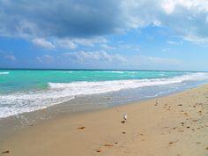 Hallandale Beach - Photo by Aaron Whitaker (Hallandale Beach, Florida)