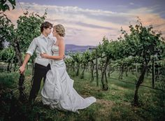 Matt Shumate Photography incredibly beautiful portrait of bride and groom by the grapevines at Arbor crest winery