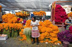 Mercado de Jamaica con flores de cempasuchil y terciopelo