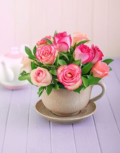 Image from http://www.netflorist.co.za/layout/product-photos/ZoomIn/500X638%5CNetsp678.jpg.