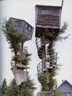Tree house ( @ Eureka, California ) :: Can you imagine the windy night, houses are waving like on a boat and wooden stairs making creaking noises...On top of the fact one looks upside down!