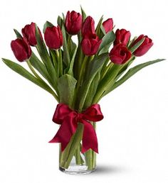Radiantly Red Tulips in Randallstown MD, Raimondi's Flowers & Gift Baskets