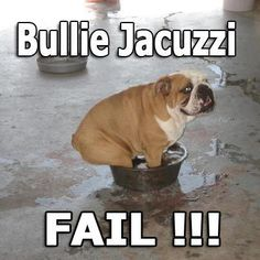 Baggy Bulldogs...nice to know there are others who try this